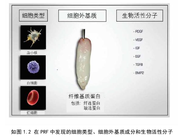 如图 1.2 在 PRF 中发现的细胞类型、细胞外基质成分和生物活性分子