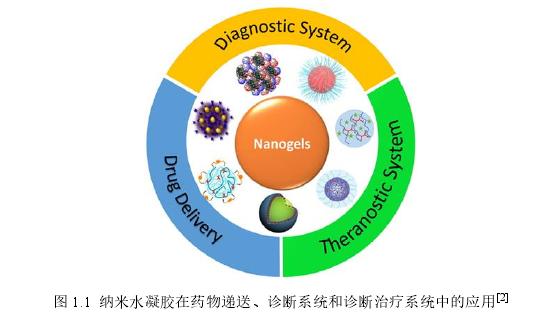 图 1.1纳米水凝胶在药物递送、诊断系统和诊断治疗系统中的应用