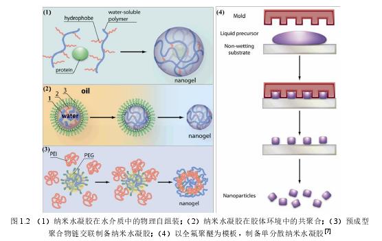 图 1.2(1)纳米水凝胶在水介质中的物理自组装;(2)纳米水凝胶在胶体环境中的共聚合;(3)预成型聚合物链交联制备纳米水凝胶;(4)以全氟聚醚为模板, 制备单分离纳米水凝胶