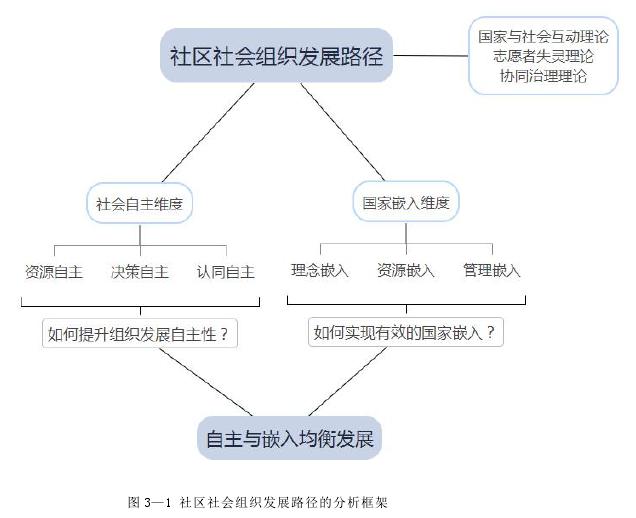 图 3—1 社区社会组织发展路径的分析框架