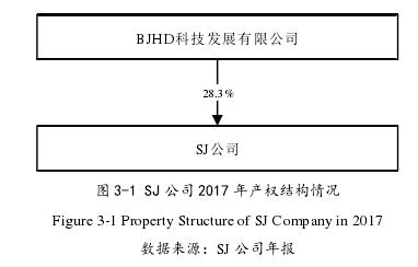 图 3-1 SJ 公司 2017 年产权结构情况
