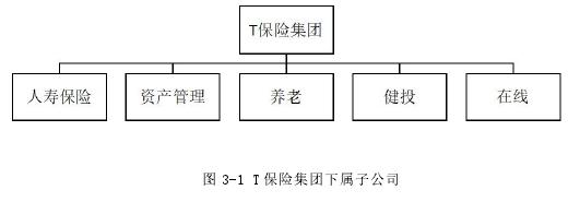 图 3-1 T 保险集团下属子公司