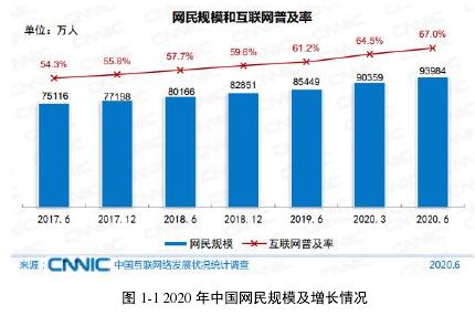 图 1-1 2020 年中国网民范围及增加情形