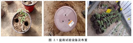 圖 2.1 盆栽試驗設備及布置